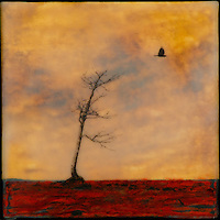 Bare autumn tree with corw mixed media encaustic photo transfer by Florida artist Jeff League.