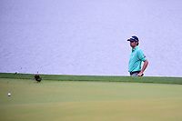 J.T. Poston (USA) watches his chip from near the water on 3  roll onto the green during round 4 of the Shell Houston Open, Golf Club of Houston, Houston, Texas, USA. 4/2/2017.<br /> Picture: Golffile | Ken Murray<br /> <br /> <br /> All photo usage must carry mandatory copyright credit (&copy; Golffile | Ken Murray)