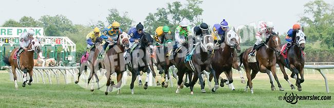 Coturnix winning at Delaware Park on 7/12/14