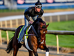 LOUISVILLE, KENTUCKY - APRIL 29: Omaha Beach, trained by Richard Mandella, exercises in preparation for the Kentucky Derby at Churchill Downs in Louisville, Kentucky on April 29, 2019. John Voorhees/Eclipse Sportswire/CSM