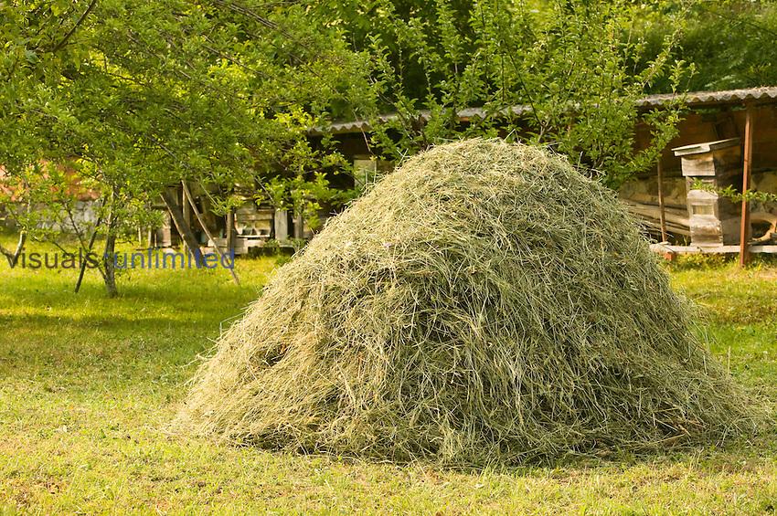 A hay pile in the Picos de Europa, Spain