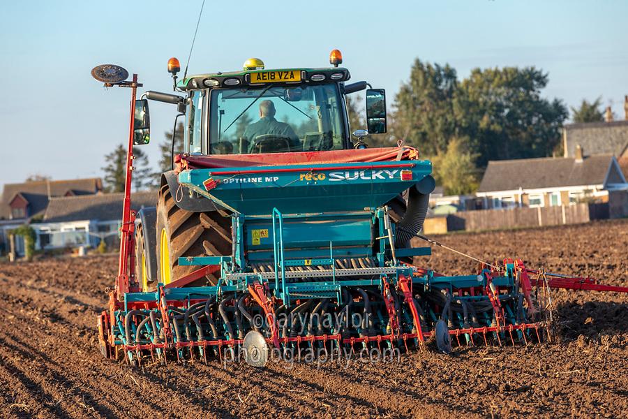 Combination drilling winter wheat - Lincolnshire, October