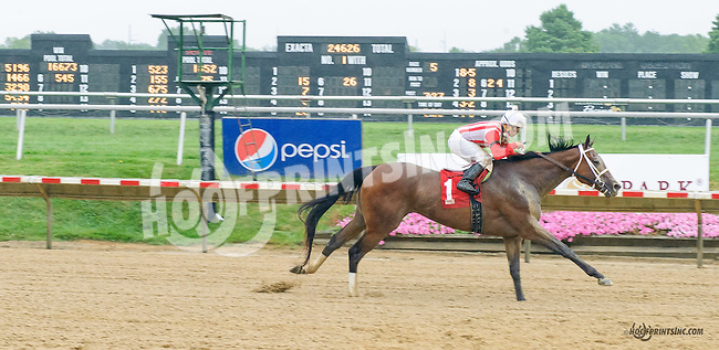 Truth Only winning at Delaware Park on 8/9/15