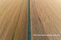 63801-10410 Dividing line between two corn fields before harvest-aerial Marion Co. IL