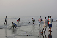 Beach fishermen pulling in Gill net through surf, Goa, Arabian sea, India