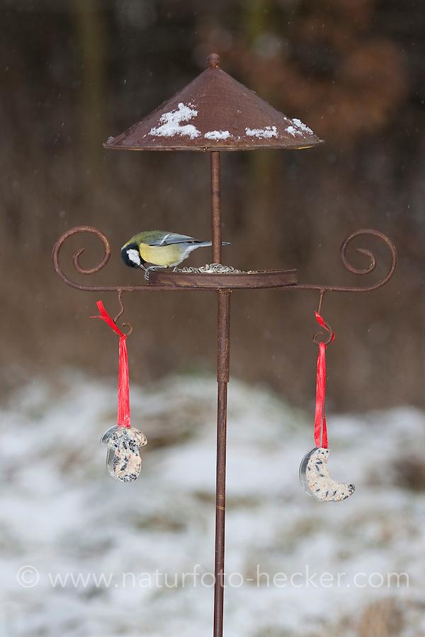 Kohlmeise, Kohl-Meise, Meise, an der Vogelfütterung, Fütterung im Winter bei Schnee, im mit Körnern gefüllten Futterhäuschen, Vogelhäuschen, Futterhaus, Vogelhaus, Winterfütterung, Parus major, great tit