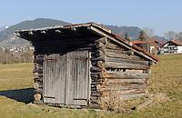 H&uuml;tte auf Viehweide  Oberstdorf im Allg&auml;u, Bayern, Deutschland<br /> cabin on pasture in Oberstdorf, Allg&auml;u, Bavaria,  Germany