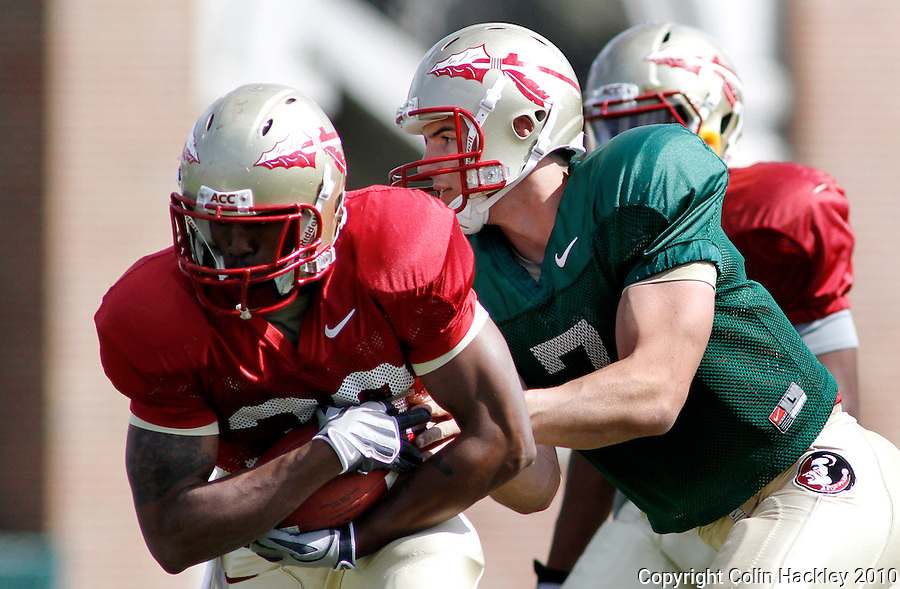 TALLAHASSEE, FLA.3/22/10-FSUFB32210 CH14-Florida State running back Jermaine Thomas, left, gets hand off from quarterback Christian Ponder during practice Monday in Tallahassee...COLIN HACKLEY PHOTO
