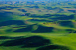 Washington, Steptoe, Palouse. The rolling farmlands of the Palouse in Spring.