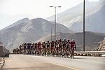 The peleton in action through the Green Mountains during Stage 1 of the 2018 Tour of Oman running 162.5km from Nizwa to Sultan Qaboos University. 13th February 2018.<br /> Picture: ASO/Muscat Municipality/Kare Dehlie Thorstad | Cyclefile<br /> <br /> <br /> All photos usage must carry mandatory copyright credit (&copy; Cyclefile | ASO/Muscat Municipality/Kare Dehlie Thorstad)