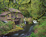 Clark County, WA: Cedar Creek Grist Mill (1876) in early spring forest