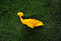 Sept. 27, 2009; Glendale, AZ, USA; Detailed view of a yellow penalty flag during the game between the Indianapolis Colts against the Arizona Cardinals at University of Phoenix Stadium. Indianapolis defeated Arizona 31-10. Mandatory Credit: Mark J. Rebilas-