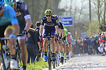 Riders including Mathew Hayman (AUS) Orica-Scott summit the Taaienberg 18% cobbled climb during the 60th edition of the Record Bank E3 Harelbeke 2017, Flanders, Belgium. 24th March 2017.<br /> Picture: Eoin Clarke | Cyclefile<br /> <br /> <br /> All photos usage must carry mandatory copyright credit (&copy; Cyclefile | Eoin Clarke)