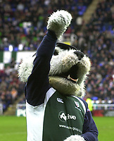 © Peter Spurrier/Intersport Images .Tel + 44 1494 783165 email images@Intersport-images.com.co.uk.04/01/2004 - Photo  Peter Spurrier.2003/04 Zurich Rugby Premiership London Irish v Northampton.Digger London Irish Mascot