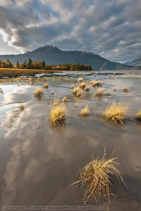 Turnagain Arm tidal mud flats and marsh grasses, Chugach mountains, Chugach National Forest, southcentral, Alaska.