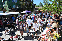 NWA Democrat-Gazette/J.T. WAMPLER Vendors and non-profit organizations line the street Sunday May 21, 2017 at the Seventh annual Block Street Block Party held all along Block Ave. from the square to Dickson St. Thousands of people attended with around 150 vendors, 90 bands, several beer gardens and more.