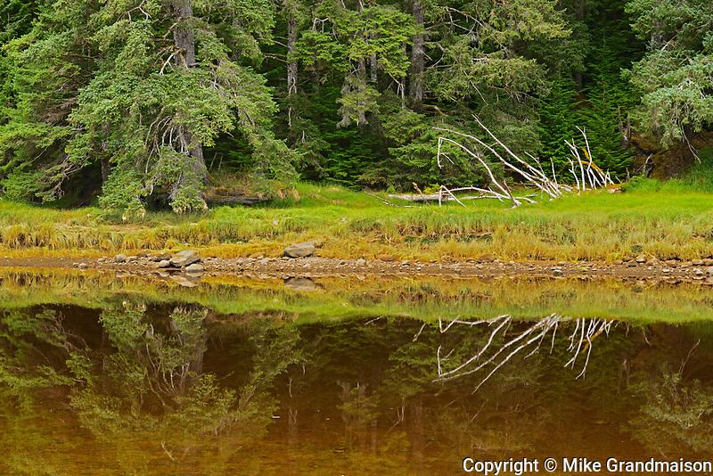 Tlell River. Graham Island. , Haida Gwaii (formerly the Queen Charlotte Islands), British Columbia, Canada