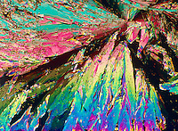 ASPIRIN CRYSTALS ARE OPTICALLY ACTIVE <br /> Acetylsalicylic Acid C9H8O4<br /> 75x mag. Liquefied &amp; recrystallized, polarized light