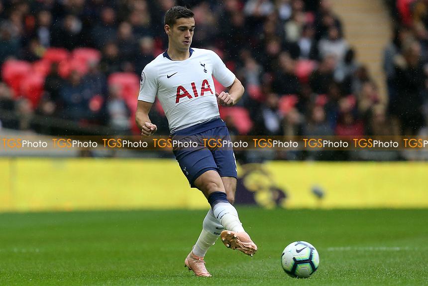Harry Winks of Tottenham Hotspur during Tottenham Hotspur vs Cardiff City, Premier League Football at Wembley Stadium on 6th October 2018