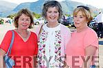 Dolly Mangan Knocknagoshel, Pat Fleming and Helen Brosnan Killarney at the Killarney Races on Monday evening