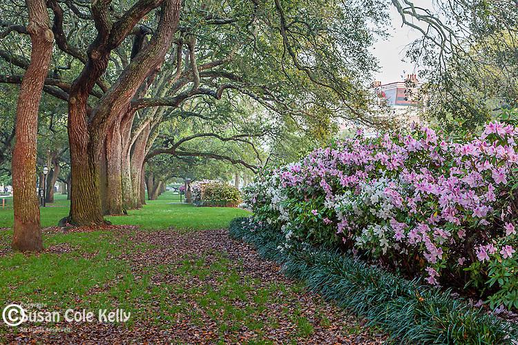 White Point Garden in Charleston, South Carolina, USA