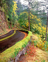 Columbia River Gorge highway with moss covered stone wall and fall color. Oregon