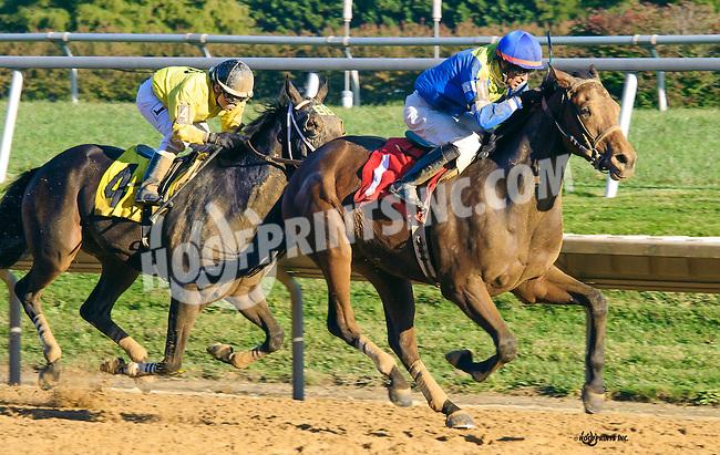 Code Name Raven winning at Delaware Park on 10/15/16