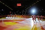 20/10/2012 - Grandi nomi del pattinaggio di figura su ghiaccio, si esibiscono per il Golden Skate 2012 al Palavela di Torino, il 20 ottobre 2012.<br /> <br /> 20/12/2012 - Figure Ice Skating stars exhibit at Golden Skate 2012 at Turin Palavela, on 20th october 2012. Shining Blades