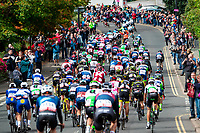 Picture by Alex Whitehead/SWpix.com - 07/09/2018 - Cycling - OVO Energy Tour of Britain - Stage 6: Barrow-in-Furness to Whinlatter - The peloton in action near Keswick.
