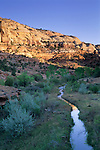 Sunrise on sandstone cliffs at Calf Creek Grand Staircase Escalante Nat'l. Mon. SR 12 Scenic Byway, UTAH