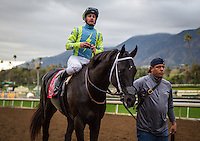 ARCADIA, CA - FEBRUARY 04: Isotherm #11, ridden by Flavien Prat wins in the San Marcos Stakes at Santa Anita Park on February 4, 2017 in Arcadia, California. (Photo by Zoe Metz/Eclipse Sportswire/Getty Images)