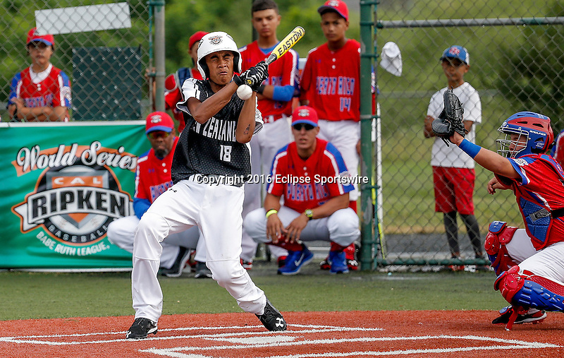 ABERDEEN, MD - AUGUST 01: Tui Amosa #18 of New Zealand gets hit by a pitch with the bases loaded, causing New Zealand to score a run in a game between New Zealand and Puerto Rico during the Cal Ripken World Series at The Ripken Experience Powered by Under Armour on August 1, 2016 in Aberdeen, Maryland. (Photo by Ripken Baseball/Eclipse Sportswire/Getty Images)