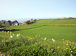 St Pierre du Bois countryside view Guernsey, Channel islands