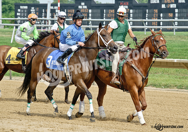 Chasing The Moon before The Beautiful Day Stakes at Delaware Park on 7/3/14