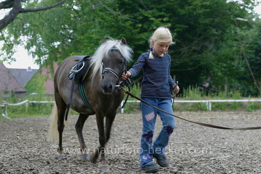 Shetland-Pony, Shetlandpony, Shetty, Shetti, Ponyhof, Shetland - Pony wird eingeritten, zunächst Führung am Halfter durch Mädchen, Reiten