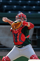 Catcher Jordan Procyshen (17) of the Greenville Drive during a preseason workout on  Wednesday, April 8, 2015, the day before Opening Day, at Fluor Field at the West End in Greenville, South Carolina. (Tom Priddy/Four Seam Images)