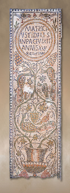 The Christian memorial funerary mosaic of Matziceus, a Libyan, with the inscription reading: 'the faithful Matziceus lived in peace for 42 years, rested (died) on the fifteenth of the calends of June'.<br /> <br /> The panel is decorated with vines which grow out of a cantharus, a Greek style drinking cup, which represents the fountain of life.<br /> <br /> 5th century Eastern Byzantine Roman mosaic from the Parish church of Demna, left AisleBardo Museum, Tunis, Tunisia