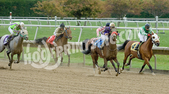 Whos Your Daddy winning at Delaware Park on 10/14/09