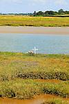 Memorial cross to person drowned Butley Creek river, Boyton, Suffolk, England, UK