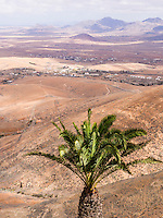 Spain, ESP, Canary Islands, Fuerteventura, Mirador de Morro Velosa, 2012Oct14: A view from the mountain down to the valley.
