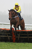 Bennys Well ridden by Brendan Powell jumps during the Berry Bros & Rudd National Hunt Novices Hurdle - Horse Racing at Newbury Racecourse, Berkshire