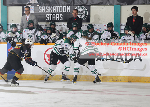 Sudbury, ON - Apr 22 2019 - Saskatoon Stars vs. As de Quebec during the  2019 ESSO Cup at the Gerry McCrory Countryside Sports Complex in Sudbury, Ontario, Canada (Photo: Alex D'Addese/Hockey Canada)