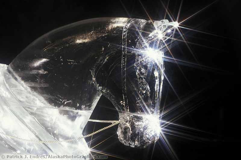 Ice Sculpture, Draft horse