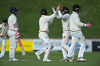 The Wellington Firebirds celebrate the dismissal of Otago's Hamish Rutherford during day two of the Plunket Shield cricket match between the Wellington Firebirds and Otago Volts at the Basin Reserve in Wellington, New Zealand on Tuesday, 22 October 2019. Photo: Dave Lintott / lintottphoto.co.nz