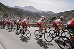 Cofidis team mates Geoffrey Soupe (FRA), Jesus Herrada (ESP), Luis Angel Mate (ESP) and Darwin Atapuma (COL) during Stage 5 of the 10th Tour of Oman 2019, running 152km from Samayil to Jabal Al Akhdhar (Green Mountain), Oman. 20th February 2019.<br /> Picture: ASO/P. Ballet | Cyclefile<br /> All photos usage must carry mandatory copyright credit (&copy; Cyclefile | ASO/P. Ballet)