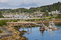 Transient dock in Sitka Channel, with Sealing Cove Harbor and Mount Edgecumbe in the distance, Sitka, Baranof Island, Southeast Alaska panhandle.