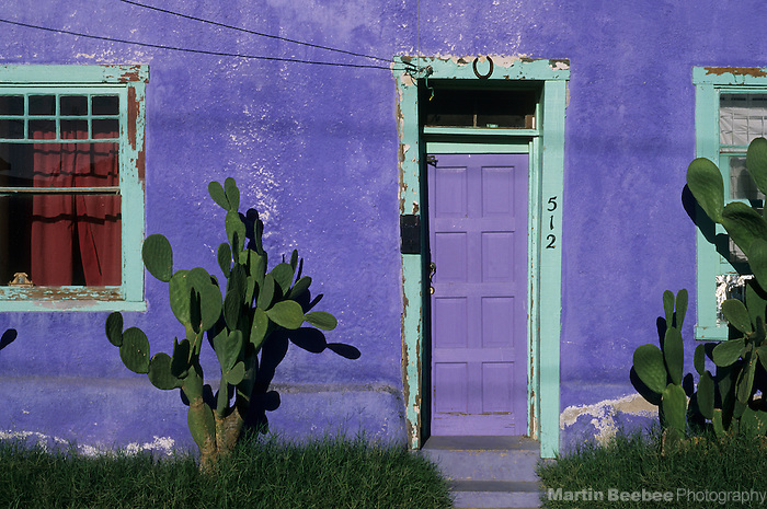 Cactus and doorway in the Barrio Historico, the historical section of Tucson, Arizona, dating to the 1800s