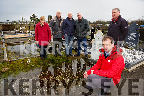 Jack Shanahan with l-r: Helen and Pat O'Connor, Jimmy Connell, Bobby O'Connell and Tom O'Leary who are appealing to the Council to stop the flooding in Kilbanivane graveyard in Castleisland