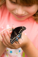 Little girl looking at Black Swallowtail Butterfly sitting on her finger