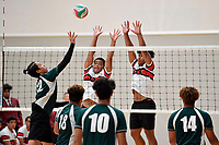 20190301 Volleyball – CSW Senior Tournament